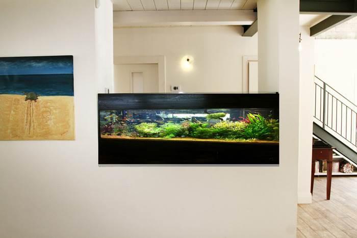 אקווריום מרהיב של פרשריף אקווריומים מושך את תשומת הלב של המבקרים