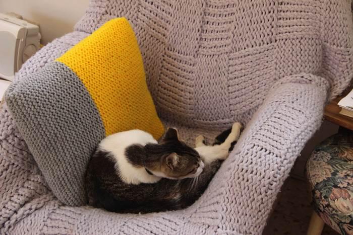 לא לחתולים בלבד- כיסוי וכרית סרוגים לסלון