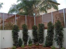 גדרות לחצר