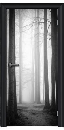FUNKYDOOR - תמונה מגנטית לדלת