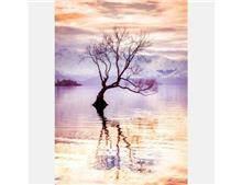 טפט עץ במים