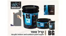 צבע לקיר - BG Paint