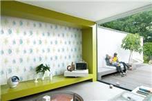 טפט צבעוני - מעודד צבעים