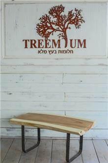 Treemium - חלומות בעץ מלא - שולחן מגזע עץ
