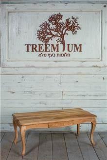 שולחן סלוני עץ מלא - Treemium - חלומות בעץ מלא