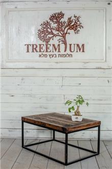 Treemium - חלומות בעץ מלא - שולחן סלון עץ ממוחזר