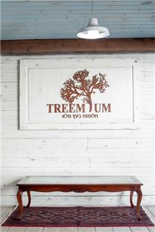 שולחן סלון קלאסי - Treemium - חלומות בעץ מלא