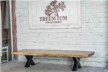 שולחן סלון ארוך - Treemium - חלומות בעץ מלא