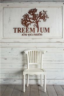Treemium - חלומות בעץ מלא - כסא בגימור רוסטיק