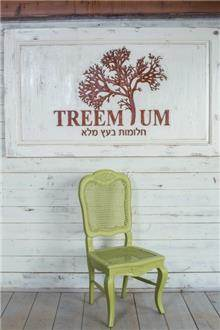 כסא אוכל ירוק - Treemium - חלומות בעץ מלא
