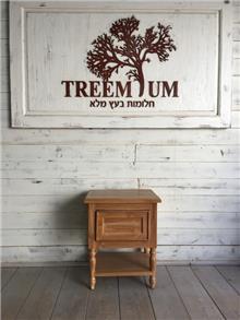 שידה ייחודית מעץ טיק - Treemium - חלומות בעץ מלא