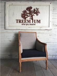 כורסא עץ מלא מעוצבת - Treemium - חלומות בעץ מלא