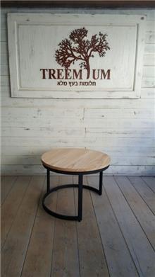 שולחן קפה מסוגנן - Treemium - חלומות בעץ מלא