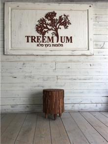הדום עגול מעץ טיק - Treemium - חלומות בעץ מלא