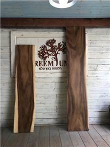 פרוסת גזע עץ - Treemium - חלומות בעץ מלא