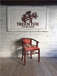כסא עץ מלא מהגוני - Treemium - חלומות בעץ מלא