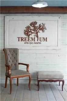 כיסא אוכל מרופד קפיטונאז' - Treemium - חלומות בעץ מלא