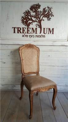 כסא גב רשת - Treemium - חלומות בעץ מלא