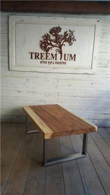 שולחן קפה - Treemium - חלומות בעץ מלא