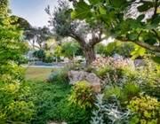 טיפול בגינה: המדריך המלא לניצול הזמן הפנוי ולכיסוח וטיפוח הדשא