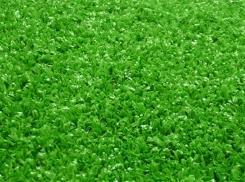 פרימיום+ - דשא עוז