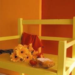 צביעת רהיטים מעץ  - נירלט