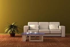 צבע קיר בגוון ירוק - נירלט