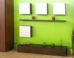 צבע קיר פנימי בגוון ירוק - נירלט
