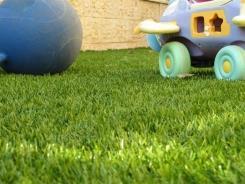 רויאל+ - דשא עוז