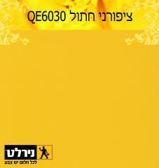 צבעים לקירות בצהוב: ציפורני חתול - נירלט