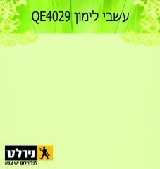 צבעים לבית בירוק: עשבי לימון - נירלט