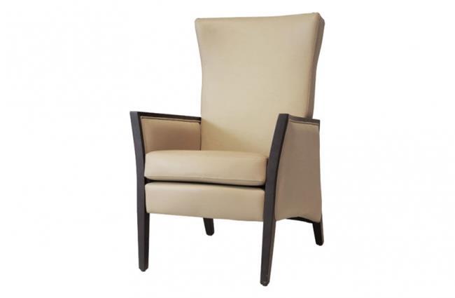 כורסא מעוצבת גב גבוה - שמרת הזורע פרויקטים