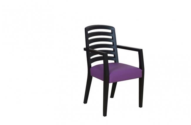 כסא אוכל סגול - שמרת הזורע פרויקטים