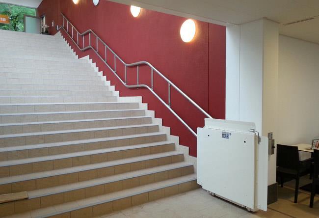 מדרגון משטח שמנת - אלקטרה תעמל - מעליות ומעלונים