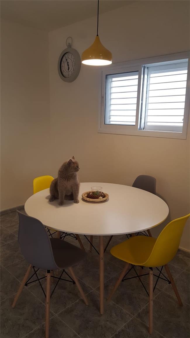 שולחן לפינת אוכל מדגם שי - כסא נדנדה