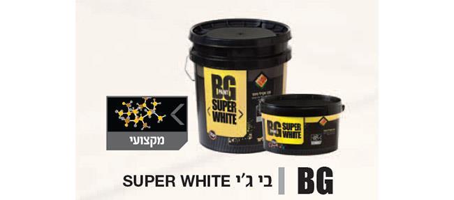 צבע לבן לקיר - BG Paint