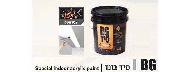 צבע סיד - BG Paint