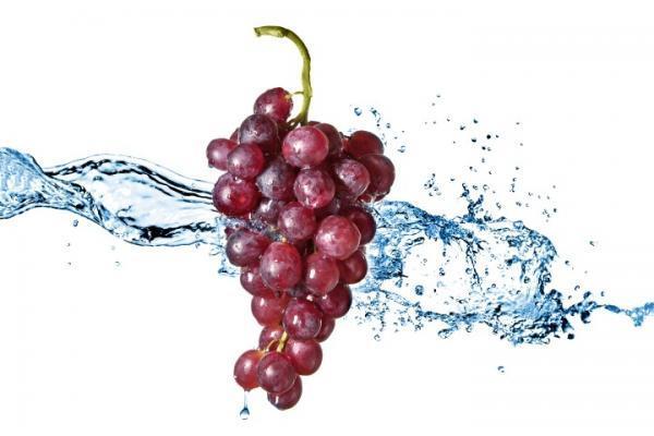 הדפס לזכוכית ענבים - א.ר. שיווק