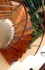 מדרגות לוליניות מעץ דובדבן  - קו נבון