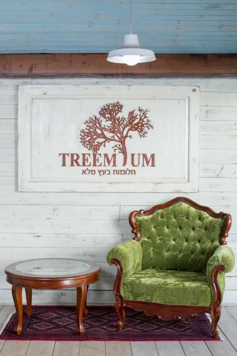 כורסא יוקרתית בירוק - Treemium - חלומות בעץ מלא