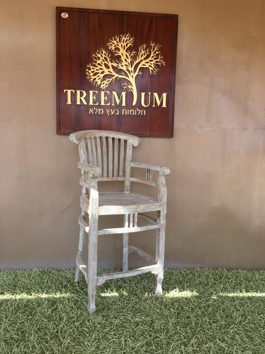 כיסא בר 2214 - Treemium - חלומות בעץ מלא