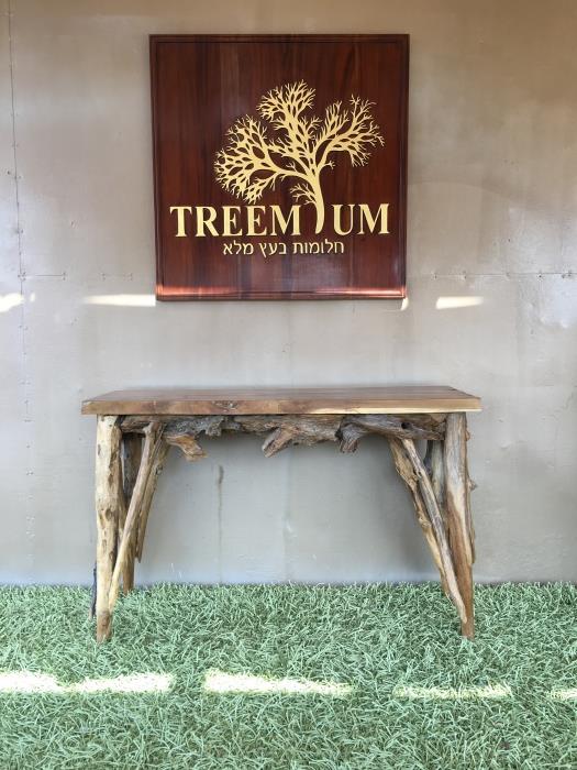 קונסולה כפרית שורש טיק - Treemium - חלומות בעץ מלא