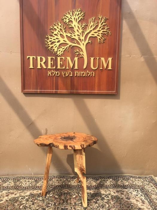 מעמד ברוש - Treemium - חלומות בעץ מלא