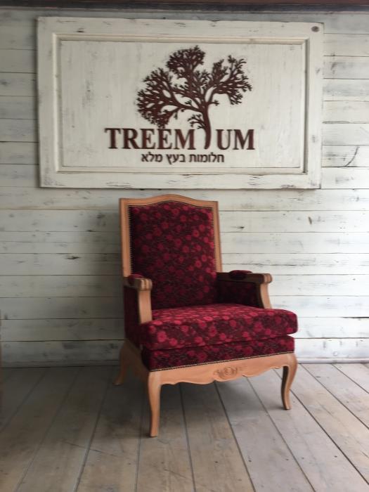 כורסא מרשימה דגם 1891 - Treemium - חלומות בעץ מלא
