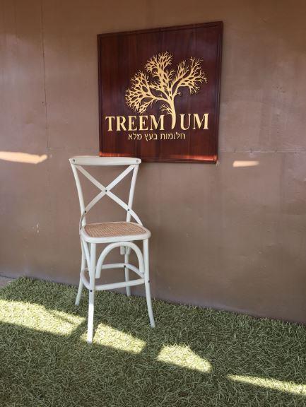 כיסא בר ייחודי - Treemium - חלומות בעץ מלא