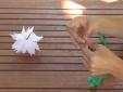הכנת פרחים מנייר קרפ
