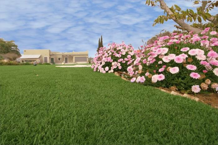 דשא קבוע אינו מונח ישירות על הקרקע ודורש הכנה מוקדמת של חישוף האדמה מדשא ישן וצמחיה, (צילום: יח