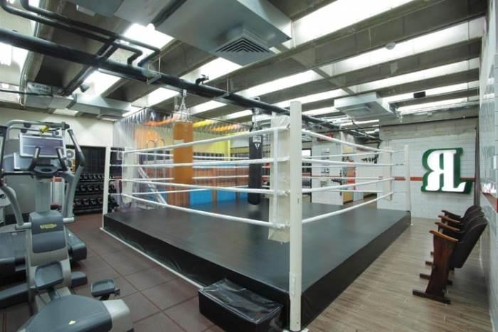 זירת אגרוף, בריכת זרמים בעומק 1.5 מ, הליכונים ומשקולות. חדר הכושר של המשרד (צילום:יח