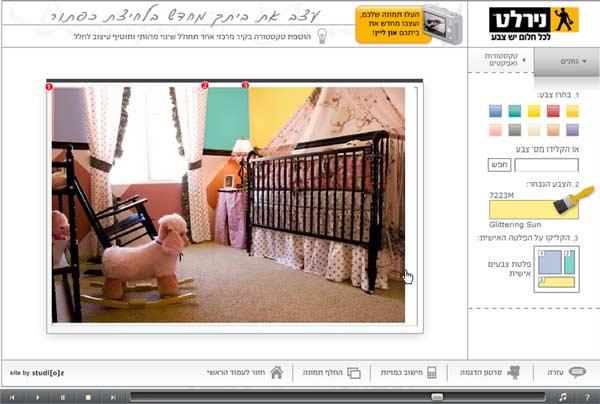 התוכנה של נירלט: מעלים תמונה לאתר, מגדירים את שטח הצביעה והצבע המבוקש ומשתוללים (צילום מסך)
