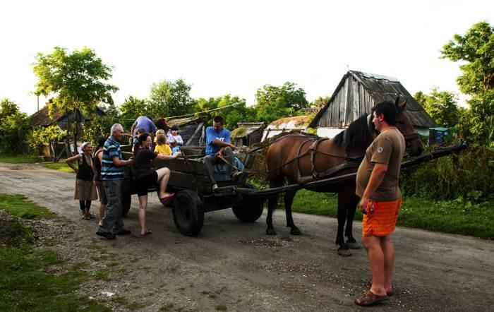 מלקטת פריטים בעזרת סוס ועגלה